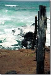 Beach in Maui_edited-1