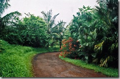 Maui-2005-LastingImagesByLisa