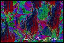 artistic salvia-1