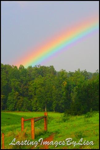 LastingImagesByLisa Rainbow2009