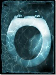 toiletwithwateroverlay